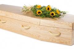 Cardboard Eco Coffin