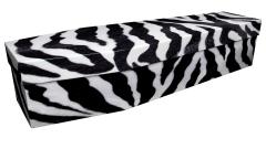 3812 - Zebra