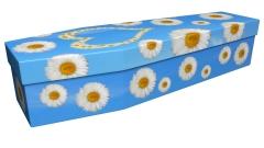 3917 - White daisy