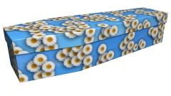 3918 - White daisy 1