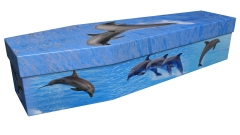 3937 - Dolphins