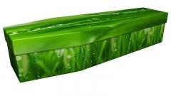 3945 - Grass