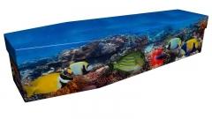 3966 - Tropical fish