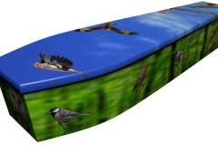 4071 - Birds of Britain Summer