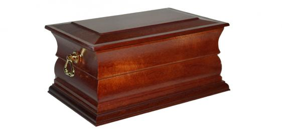 Norfolk Ashes Casket 2